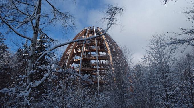 © Erlebnis Akademie AG Baumwipfelpfad Bayerischer Wald / Nationalpark Bayerischer Wald - Baumwipfelpfad / Zum Vergrößern auf das Bild klicken