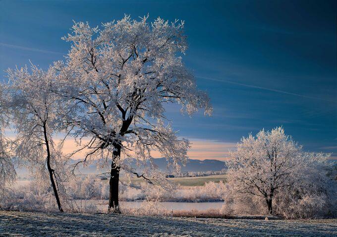 Blaues Land, Bayern - Raureifmorgen am Riegsee