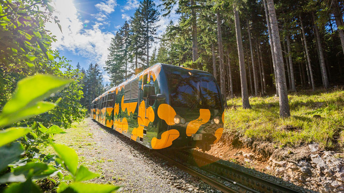 © NÖVOG / Stranz / Salamander-Zug auf den Schneeberg / Zum Vergrößern auf das Bild klicken