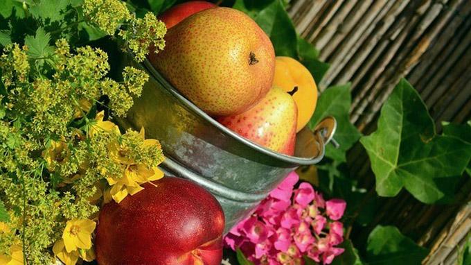 © congerdesign (CC0-Lizenz) / pixabay.com / Gartenobst / Zum Vergrößern auf das Bild klicken