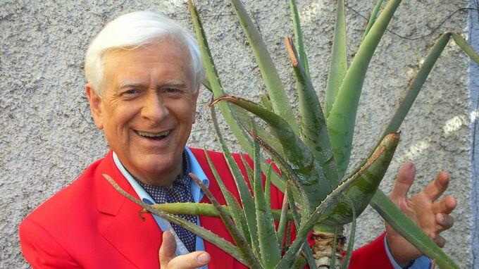 © Professor Hademar Bankhofer / Hademar Bankhofer mit Aloe vera / Zum Vergrößern auf das Bild klicken