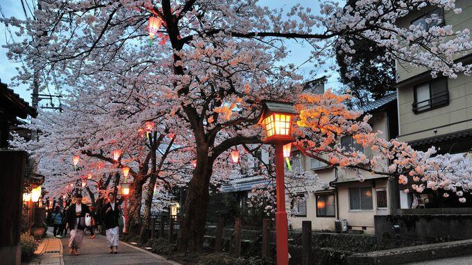 Toyooka City, Japan - Kinosaki Onsen 10