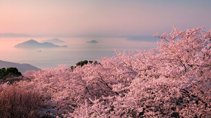 Setouchi, Japan - Mt. Shiude
