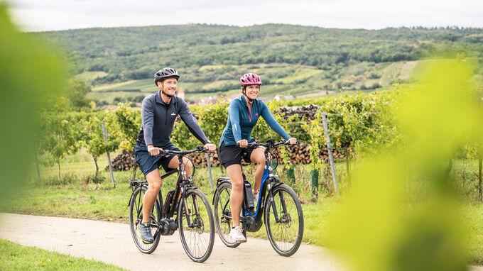 Weinviertel, NÖ - Radfahren beim Wein