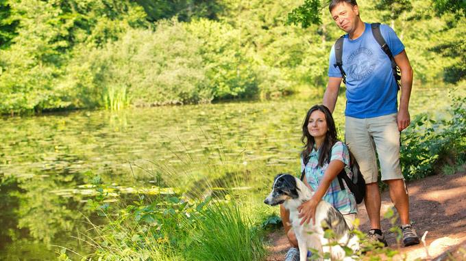 © www.wanderarena.com / Pfälzerwald-Nordvogesen, DE - Rast am See / Zum Vergrößern auf das Bild klicken
