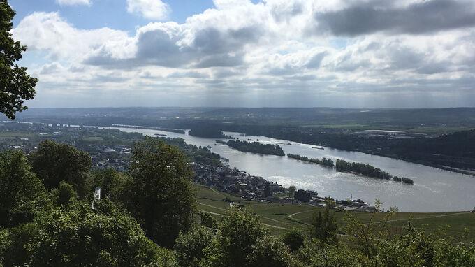 © Edith Spitzer, Wien / Rheingau, DE - Rhein / Zum Vergrößern auf das Bild klicken