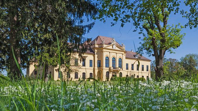 © ÖBf Archiv Panzer / Schloss Eckartsau, Niederösterreich / Zum Vergrößern auf das Bild klicken