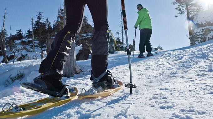 Neureichenau, Bayern - Schneeschuhtour im Dreiländereck
