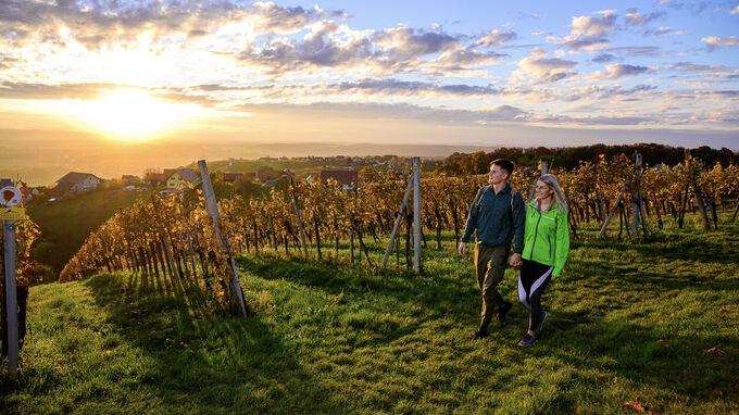 Bad Radkersburg, Steiermark - Weinwandern
