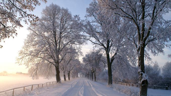 © CorporateArt / Prignitz, Brandenburg - Verschneite Allee / Zum Vergrößern auf das Bild klicken