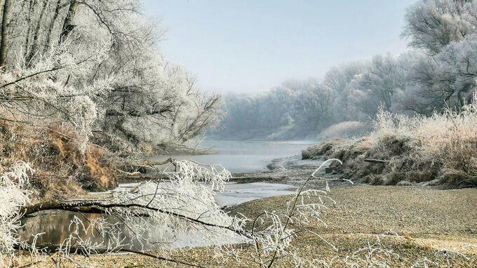 © Pavek / Nationalpark Donau-Auen - Winterstimmung / Zum Vergrößern auf das Bild klicken