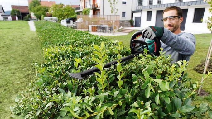 © Bosch / AGR / Rückenschmerzen bei Gartenarbeit / Zum Vergrößern auf das Bild klicken