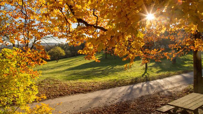 © Raimo Rumpler / Herbst, NÖ - Wanderung / Zum Vergrößern auf das Bild klicken
