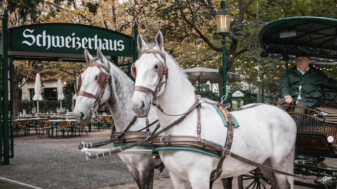 © ridingdinner.com / Riding Dinner-Fiaker / Zum Vergrößern auf das Bild klicken