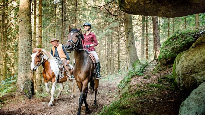 © Pferdereich Mühlviertler Alm / Mühlviertler Alm, OÖ - Reiten im Mühlviertel / Zum Vergrößern auf das Bild klicken