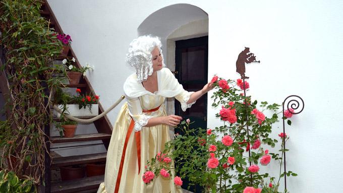 © KBB/NTG / Haydn-Haus, Eisenstadt - Innenhof / Zum Vergrößern auf das Bild klicken