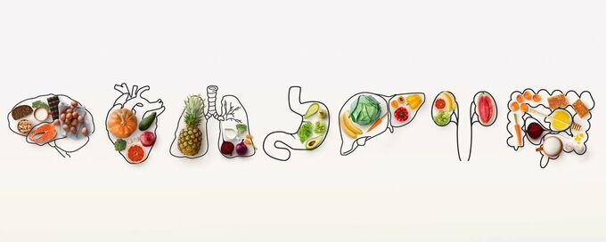 Illustration aus Faktencheck Ernährungsdschungel