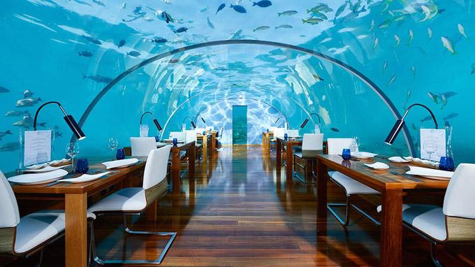 © claverinza - conradmaldives.com / Malediven - Ithaa Unterwasser-Restaurant_ / Zum Vergrößern auf das Bild klicken