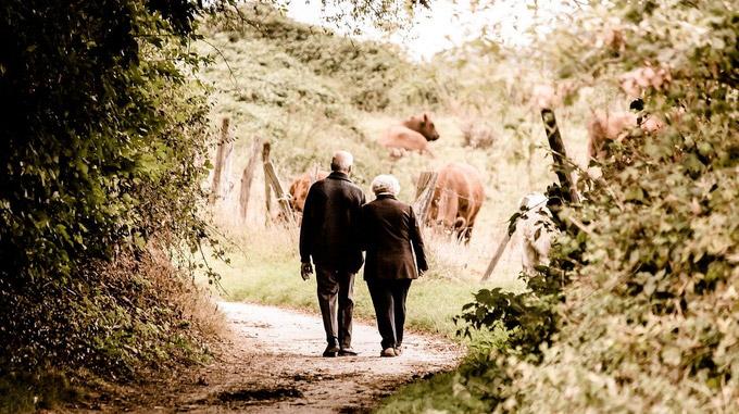 © pixabay.com / PICNIC_Fotografie / Älteres Paar / Zum Vergrößern auf das Bild klicken