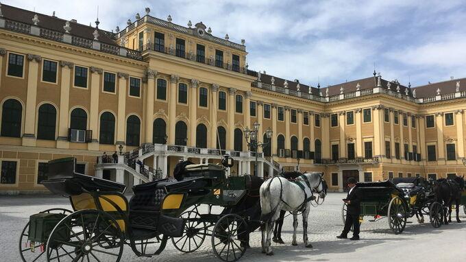 © Edith Spitzer, Wien / Schloss Schönbrunn, Wien - Fiaker / Zum Vergrößern auf das Bild klicken