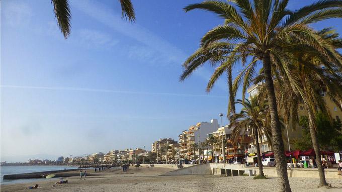 © shutterstock_1237322281 / El Arenal, Mallorca / Zum Vergrößern auf das Bild klicken