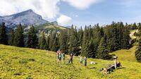 © Garmisch-Partenkirchen Tourismus GmbH / Christian Stadler / Garmisch-Partenkirchen, Bayern - Heilklima / Zum Vergrößern auf das Bild klicken