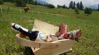 © Federica Cerri / Val di Flemme, Italien - CheeseNic a Daiano / Zum Vergrößern auf das Bild klicken