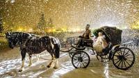 © Paolo Luconi Bisti / Madonna di Campiglio, Italien - Carnevale Asburgico / Zum Vergrößern auf das Bild klicken