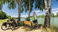Rheinhessen, DE - Radfahrer auf dem Rheinradweg