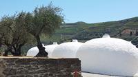 © Charles E. Ritterband 2019 / Douro, Portugal - Weinherstellung mit Ginas / Zum Vergrößern auf das Bild klicken