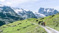 © Engelberg Titlis Tourismus / Engelberg, Schweiz - AlpkäseTrail