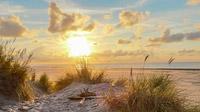 © shutterstock_716557540 / Ameland, NL / Zum Vergrößern auf das Bild klicken