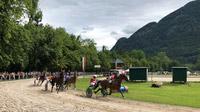 © Edith Spitzer, Wien / Bad Ischl, Salzkammergut - Trabrennen / Zum Vergrößern auf das Bild klicken