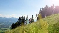 © Tourist Information Bad Tölz / Bad Tölz, Bayern - Bewegung in der Natur / Zum Vergrößern auf das Bild klicken