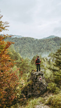 © Max Mauthner / Nationalpark Kalkalpen, OÖ - LuchsTrail / Zum Vergrößern auf das Bild klicken