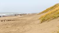 © shutterstock_790393408 / Domburg, NL / Zum Vergrößern auf das Bild klicken