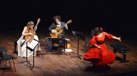 © Peter Kitzbichler / Erl, Tirol - Cuerdas Emocionantes_Gitarrenkonzert / Zum Vergrößern auf das Bild klicken