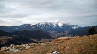 Wiener Alpen, NÖ - Winterwandern