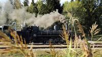 © NÖVOG / weinfranz / Waldviertelbahn, NÖ - Dampflokomotive