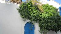 © Edith Köchl, Wien / Tunis, Tunesien / Zum Vergrößern auf das Bild klicken