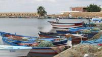 © Edith Köchl, Wien / Ghar El Melh, Tunesien - Fischerboote / Zum Vergrößern auf das Bild klicken
