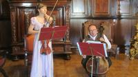 © Edith Köchl, Wien / Schloss Njaswisch, Belarus - Konzerte / Zum Vergrößern auf das Bild klicken