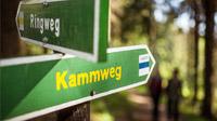 © Tourismusverband Erzgebirge e.V. / René Gaens / Erzgebirge, DE - Kammweg Erzgebirge Vogtland / Zum Vergrößern auf das Bild klicken
