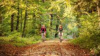 Konstanz, DE - Radfahren Wald
