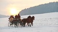 © Mühlviertel Region Freistadt / Erber / Mühlviertel, Oberösterreich - Kutschenfahrt / Zum Vergrößern auf das Bild klicken