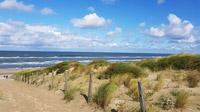 © shutterstock_712339387 / Noordwijk aan Zee, NL / Zum Vergrößern auf das Bild klicken