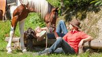 © Oberösterreich Tourismus / Erber / Pferdereich, Mühlviertel - Rast / Zum Vergrößern auf das Bild klicken