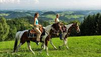 © Oberösterreich Tourismus / Erber / Pferdereich, Mühlviertel - Reitvergnügen / Zum Vergrößern auf das Bild klicken