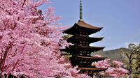 Setouchi, Japan - Rurikoji Temple