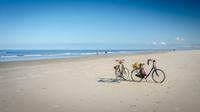 © shutterstock_763889194 / Schiermonnikoog, NL / Zum Vergrößern auf das Bild klicken